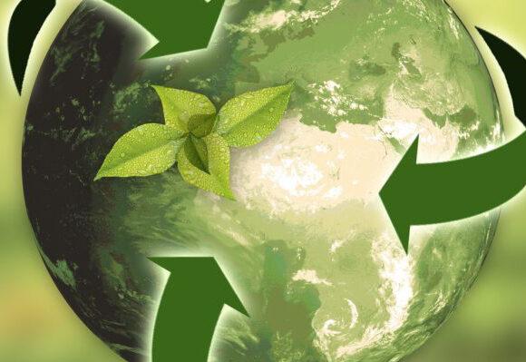 Vihreää maapalloa ympäröivät kierrätystä kuvaavat vihreät nuolet. Maapallon sisältä kasvaa vihreä kasvinverso.