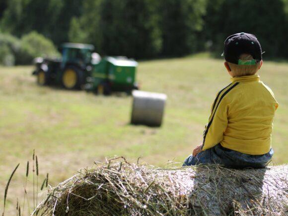 Pieni poika istuu heinäpaalin päällä pellon reunalla ja katselee traktoria.